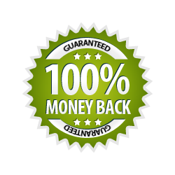 Money Back Guarantee 100% - Burst Badge Green